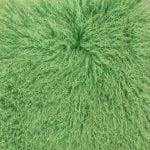 Toucan Green #19